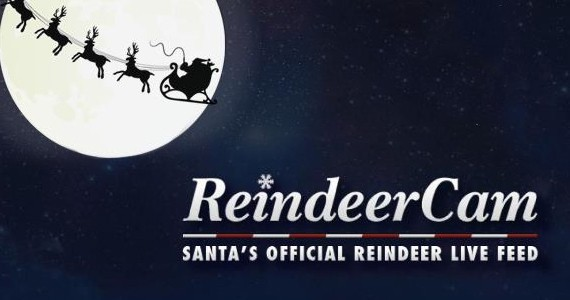 Watch the Reindeer Cam for FREE!