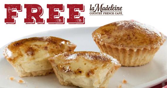 Free Mini Gingerbread Crème Brûlée On 12/9
