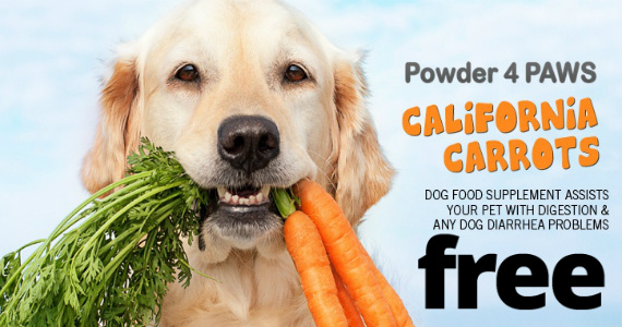 Free Sample Of California Carrots Supplement For Dogs