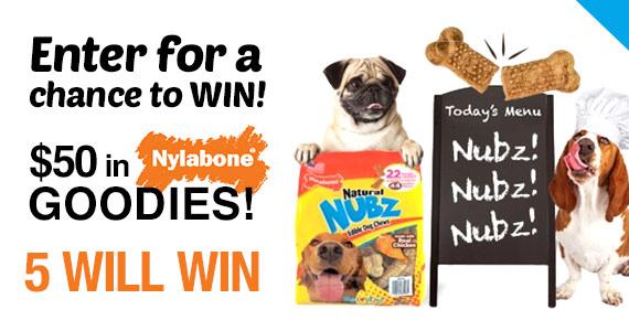 Win Nylabone Chews, Treats and Toys