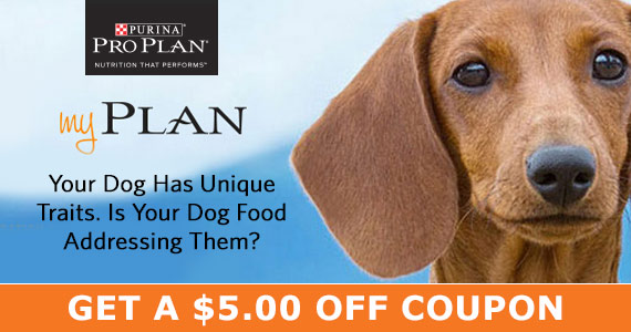 Get a $5 Coupon for Purina