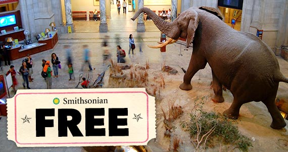 Free Museum Admission On September 24th