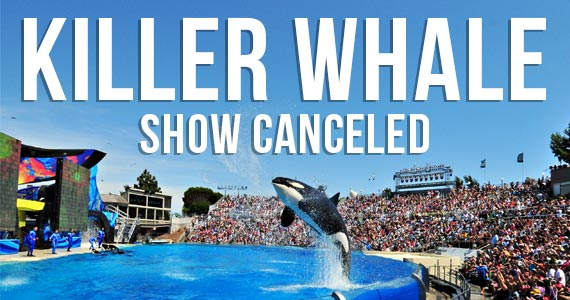Sea World San Diego Ending Killer Whale Show