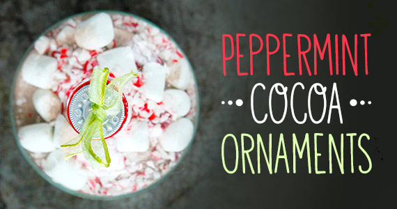 The Perfect Holiday DIY Party Favor: Peppermint Cocoa Ornaments