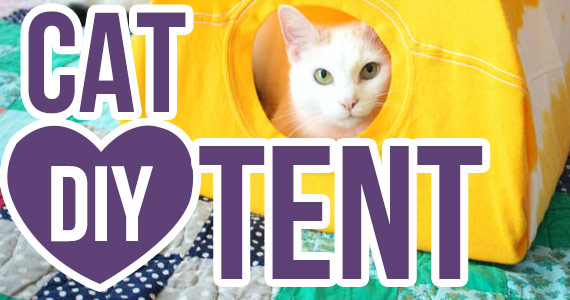 How To: Make a Cat Tent From a T-Shirt