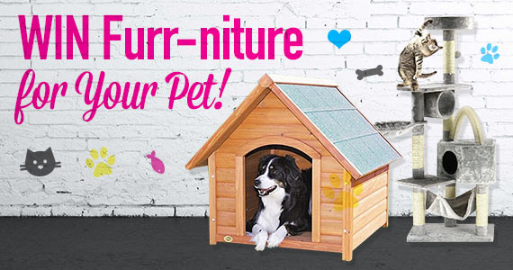 Win Furr-niture For Your Pet