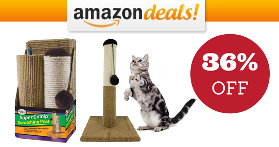 Get a Four Paws Scratching Post For Only $13.91