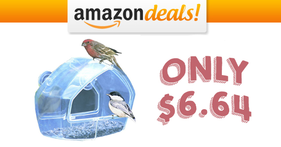 Save 53% Off a Birdscapes Clear Window Feeder