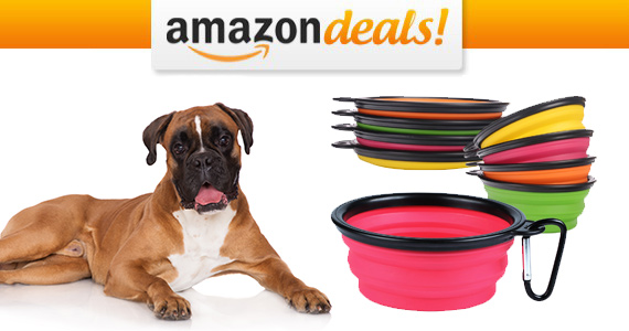 Get a PetBonus Collapsible Pet Bowl For Only $8.49