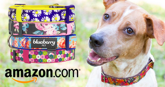Get a Blueberry Pet Collar For Only $14.99