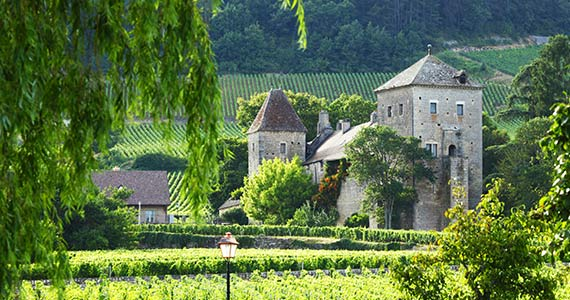 Win a Trip to Burgundy, France
