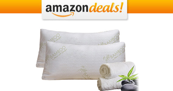 Get a Bamboo Pillow For Only $22.07
