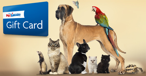 Win a $275 PetSmart Gift Card