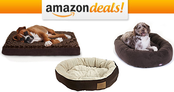 Save Up to 40% off Pet Beds