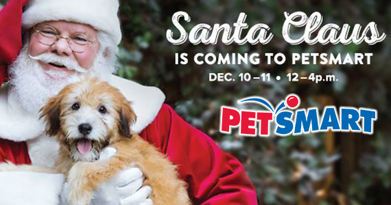 Free Photo Of Your Pet With Santa