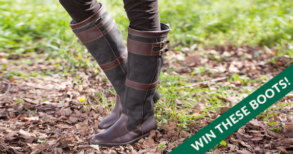 Win Dubarry Longford Country Boots