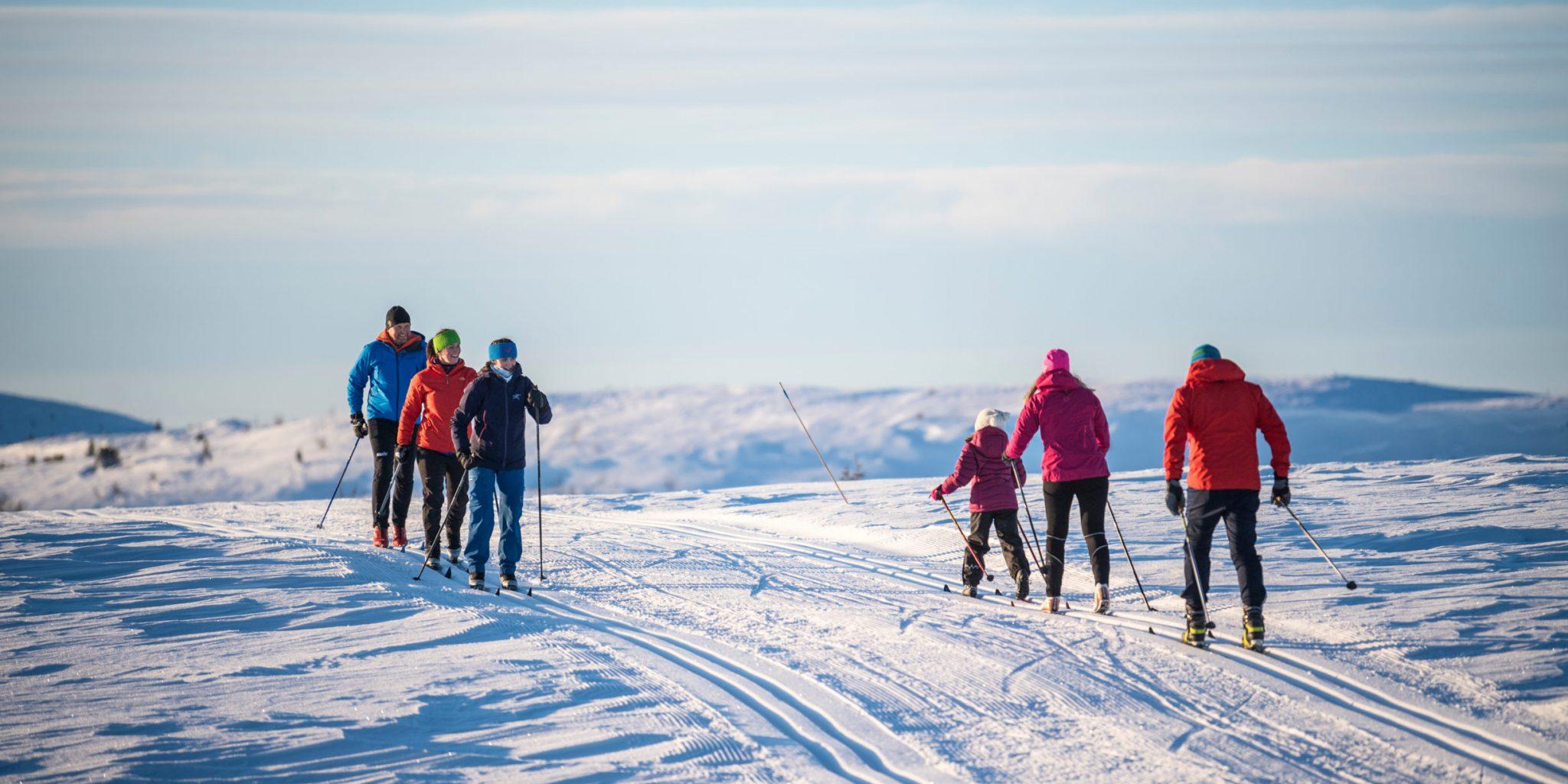 Gomobu – Vaset Winter Adventures4