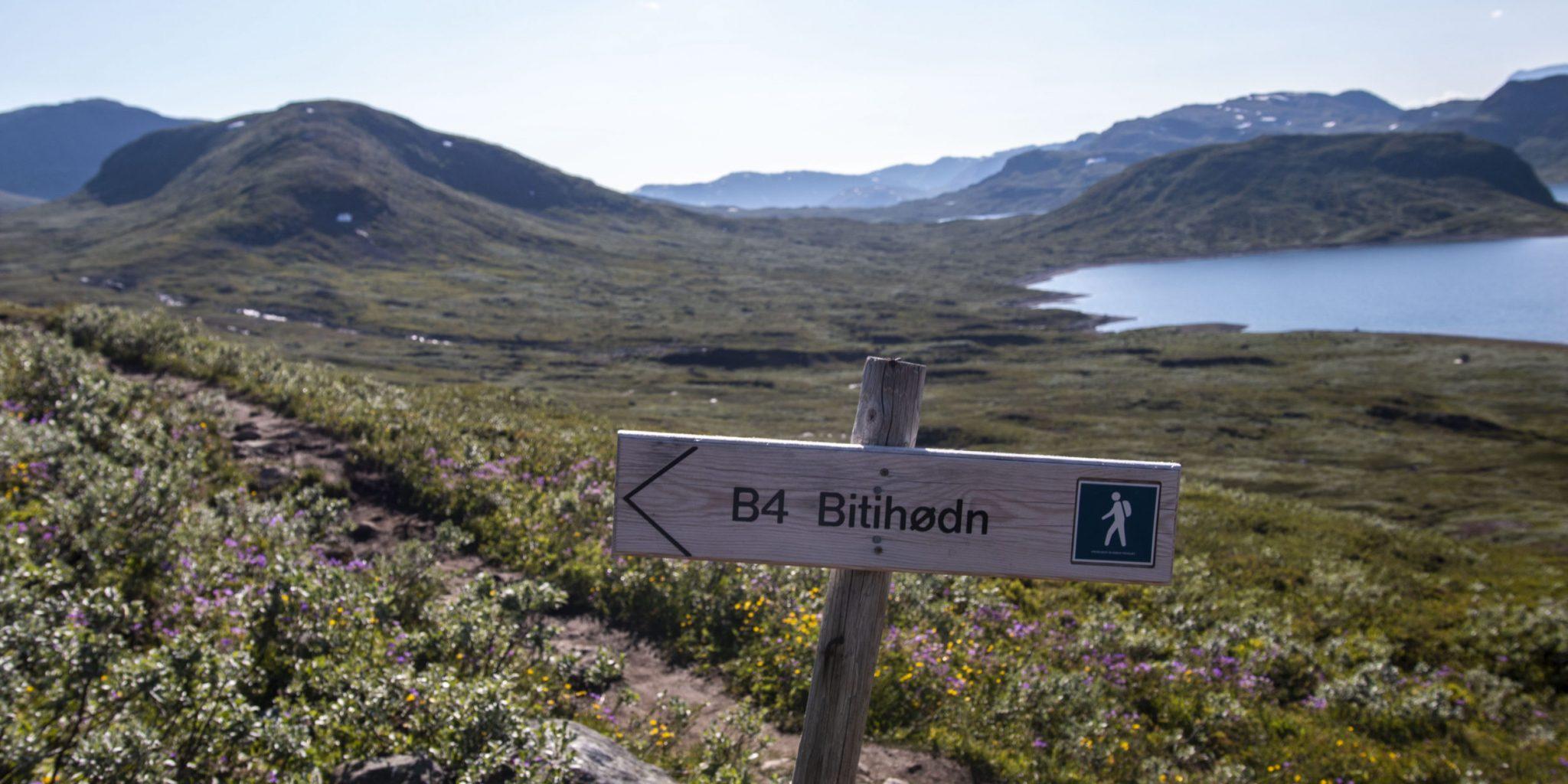 Bitihorn