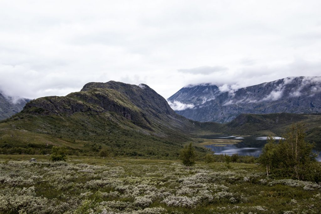 Knutshøe hiking trail (2)