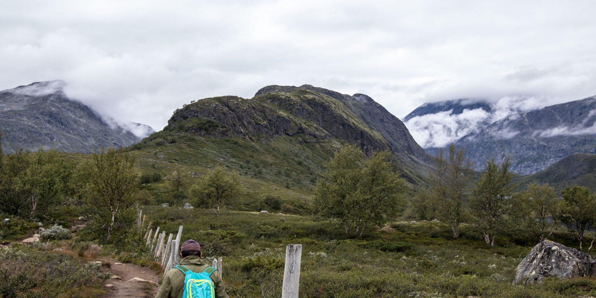 Knutshøe hiking trail (4)