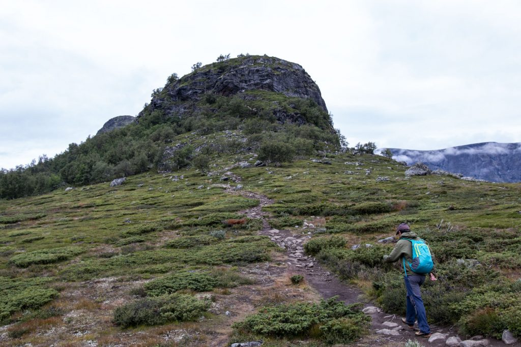 Knutshøe hiking trail (5)