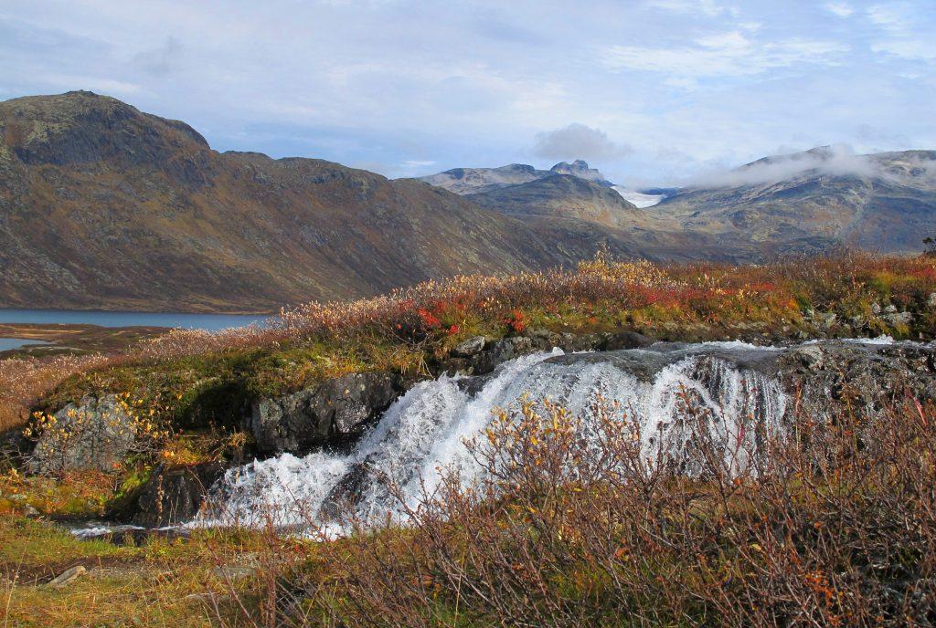 Koldedalen – Mjølkevegen – Visit Valdre Anne Strand
