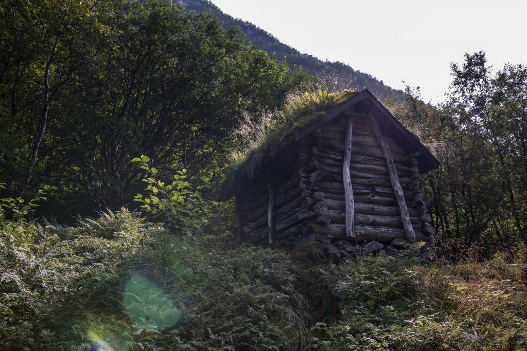 Vetti Gård Trail – Jotunheimen Travel (3)