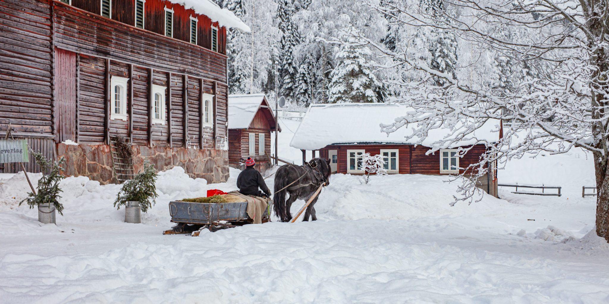 Piltingsrud Gård – Winter – Siri Berntsen (33)