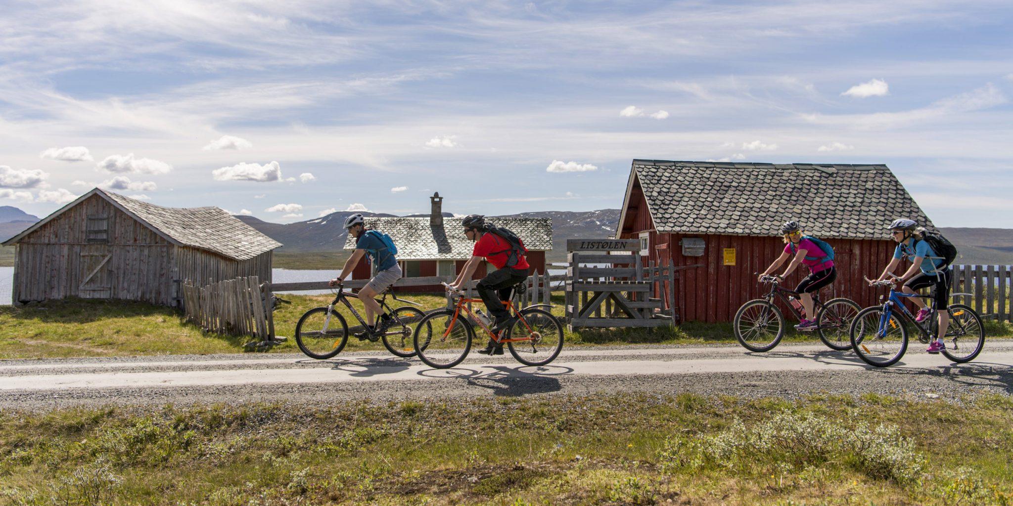 Mjølkevegen – Photo: Yngve Ask