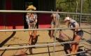 Virgin Cowgirls