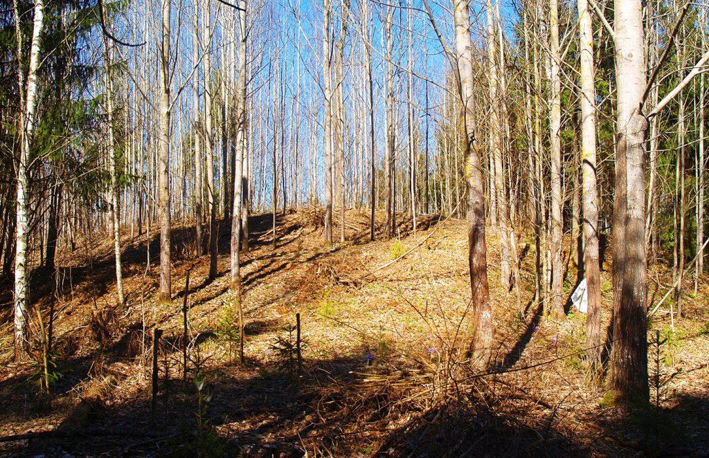 Tiek pētīti un apzināti jauni pilskalni Latvijā