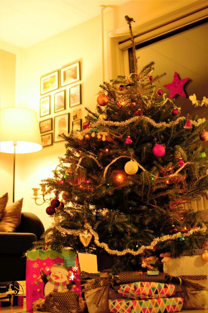 Christmas in Denmark 2016. Rolands Umbrovskis. rolandinsh
