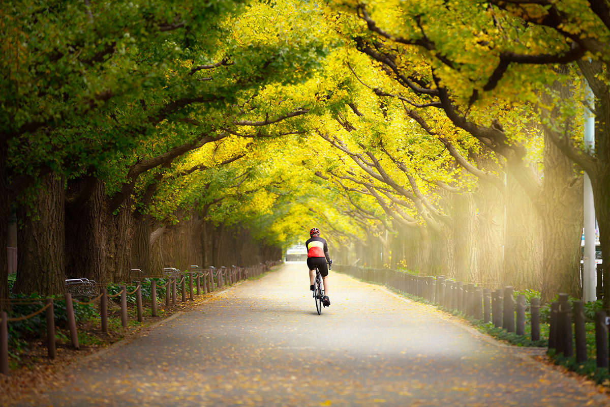 5 Affordable Places To Cycle. Tokyo, Japan.