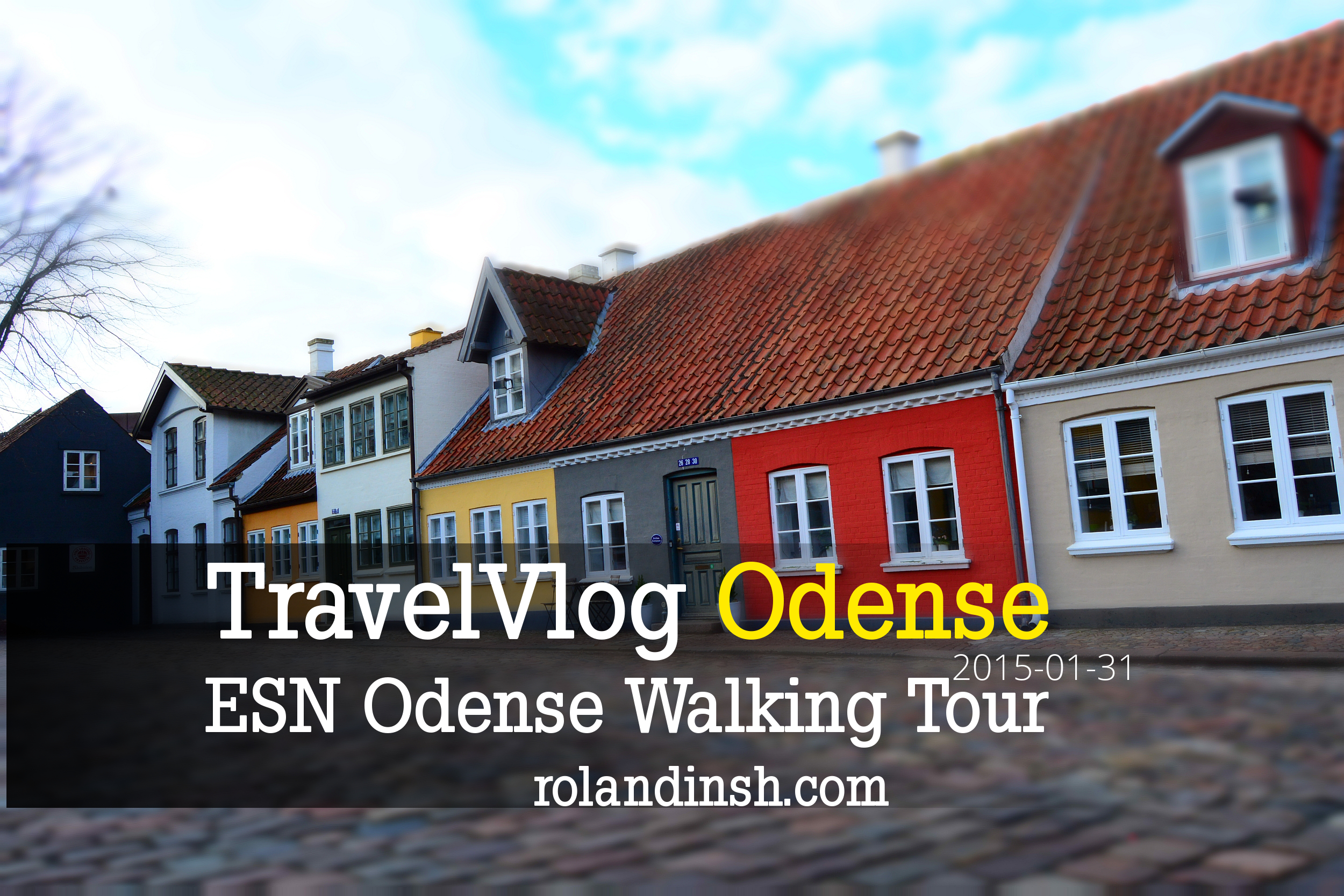 esn Odense city walk tour 2015 january