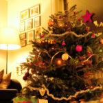 Ziemassvētki pagājuši… Atpūta var sākties!