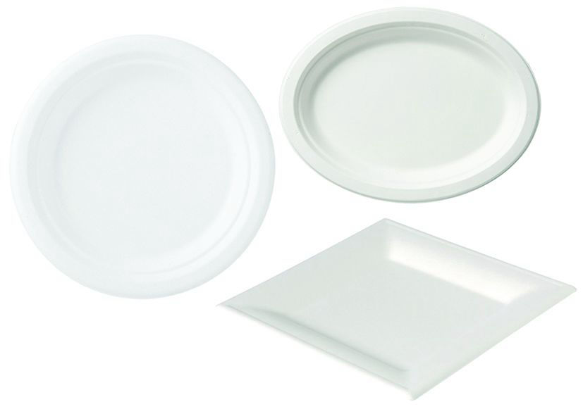 Assiettes bagasses blanches