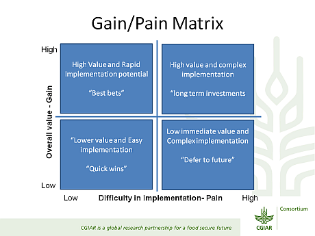 Gain/Pain Matrix