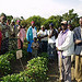Farmers attending a training session at a demonstration site in Longisa, Kenya