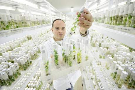 Genebanks: investing in biodiversity for future generations ...
