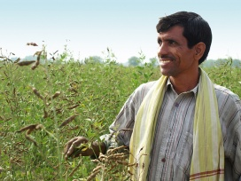 Anil Kumar Sharma, a 40-year-old farmer showing off his pigeonpea farm in Padasoli village.