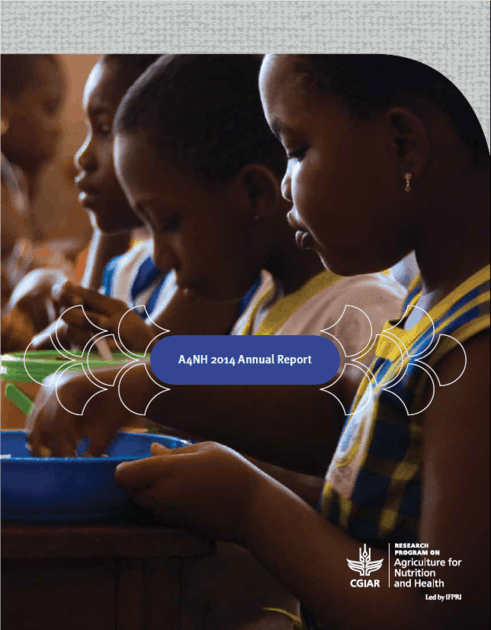 A4NH 2014 annual report cover