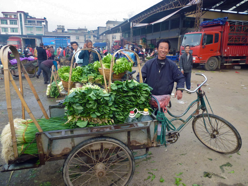 A farmer sells vegetables off a bicycle-drawn cart at a market in China (photo credit: Xiaobo Zhang/IFPRI).