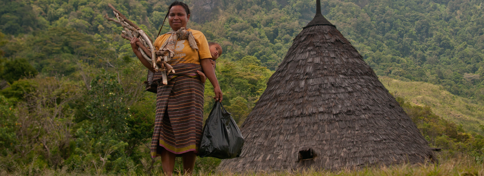 Firewood is the main energy source of the Wae rebo people.