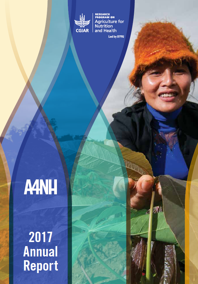 A4NH 2017 annual report cover