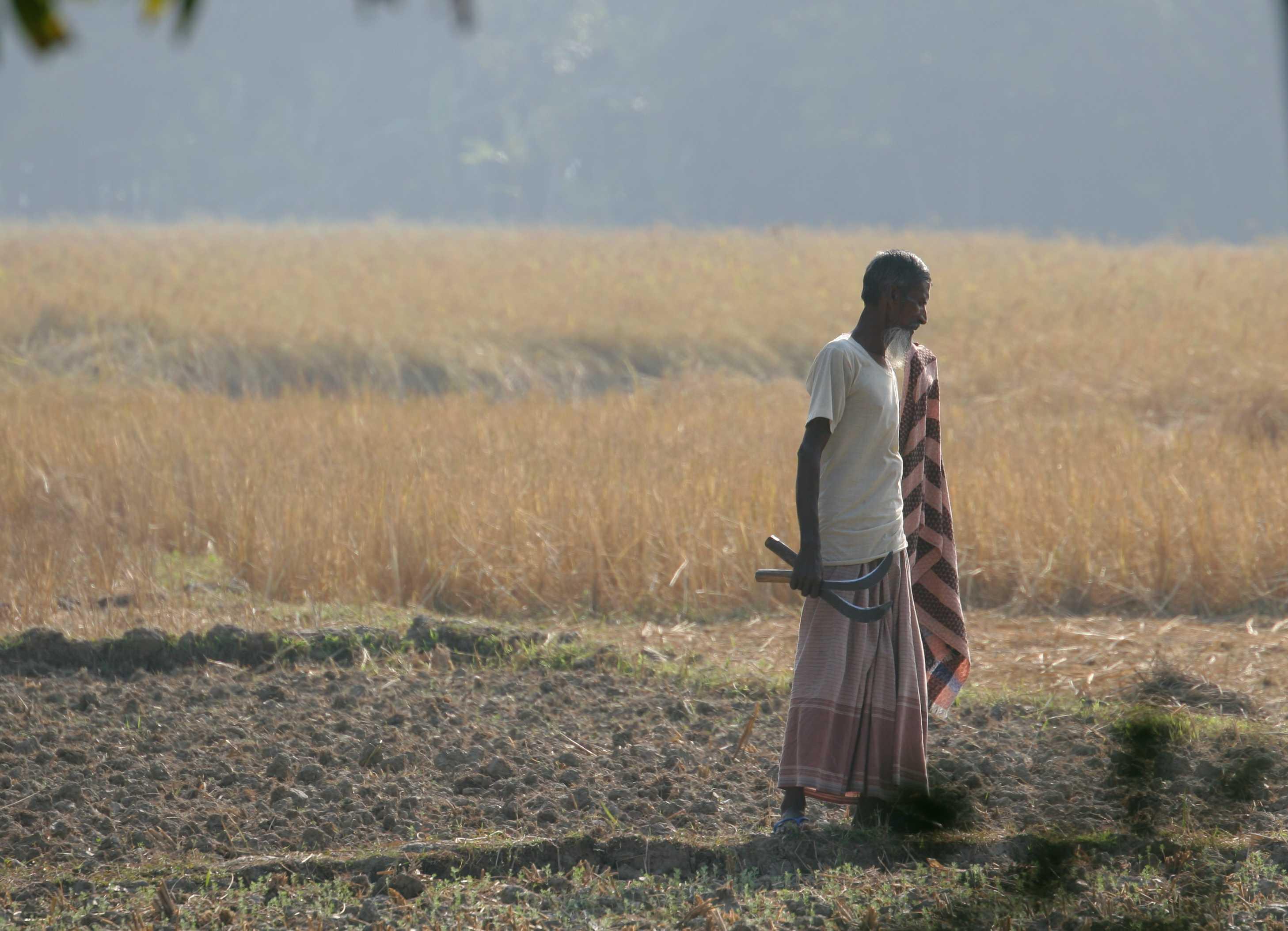 Bangladesh - Barisal rice farmer. Photo: ulricjoh, Flickr