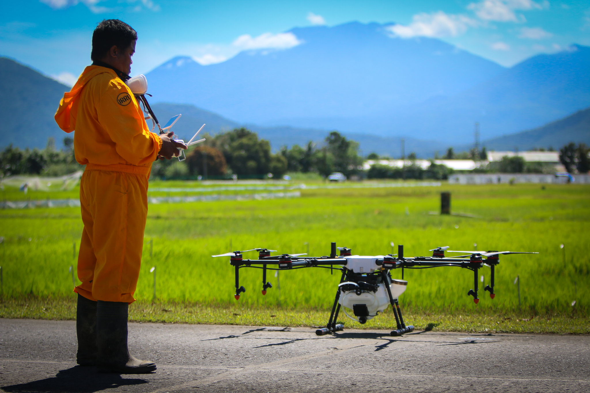Drones take the drudgery out of sowing rice. Photo: IRRI.