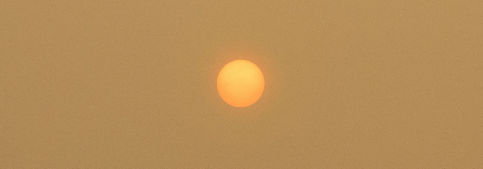 Sun seen from Sebangau national park in Central Kalimantan