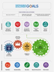 CGIAR SDG Graph 2019