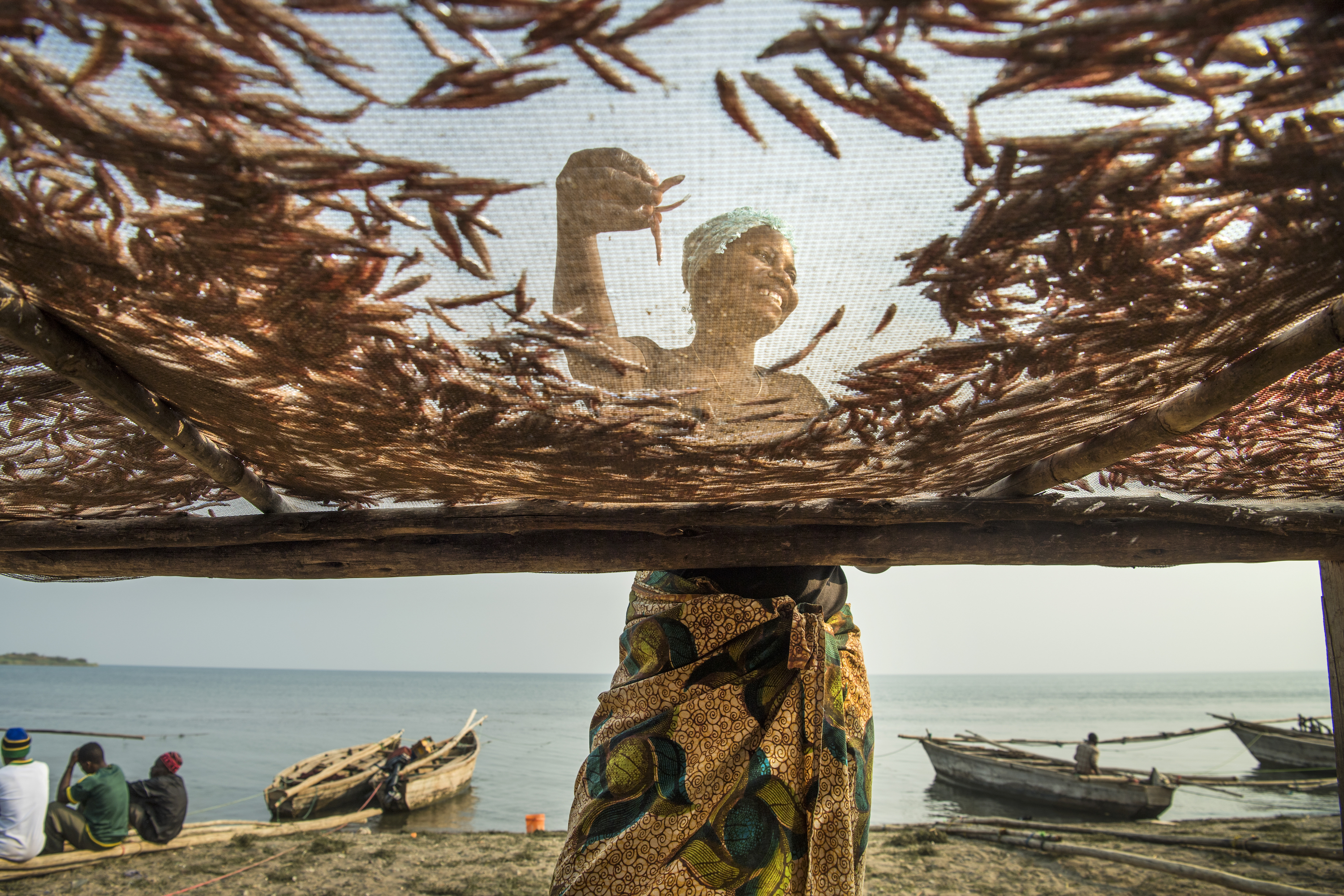 Tatu Habibu lays fish on drying racks on the shores of Lake Tanganyika, Tanzania. Ami Vitale