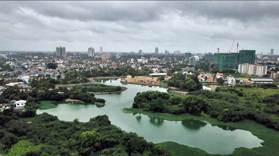 Colombo wetlands/IWMI.